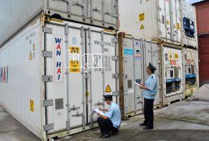 Tất cả hàng hóa tạm nhập, tái xuất đều được cơ quan Hải quan giám sát